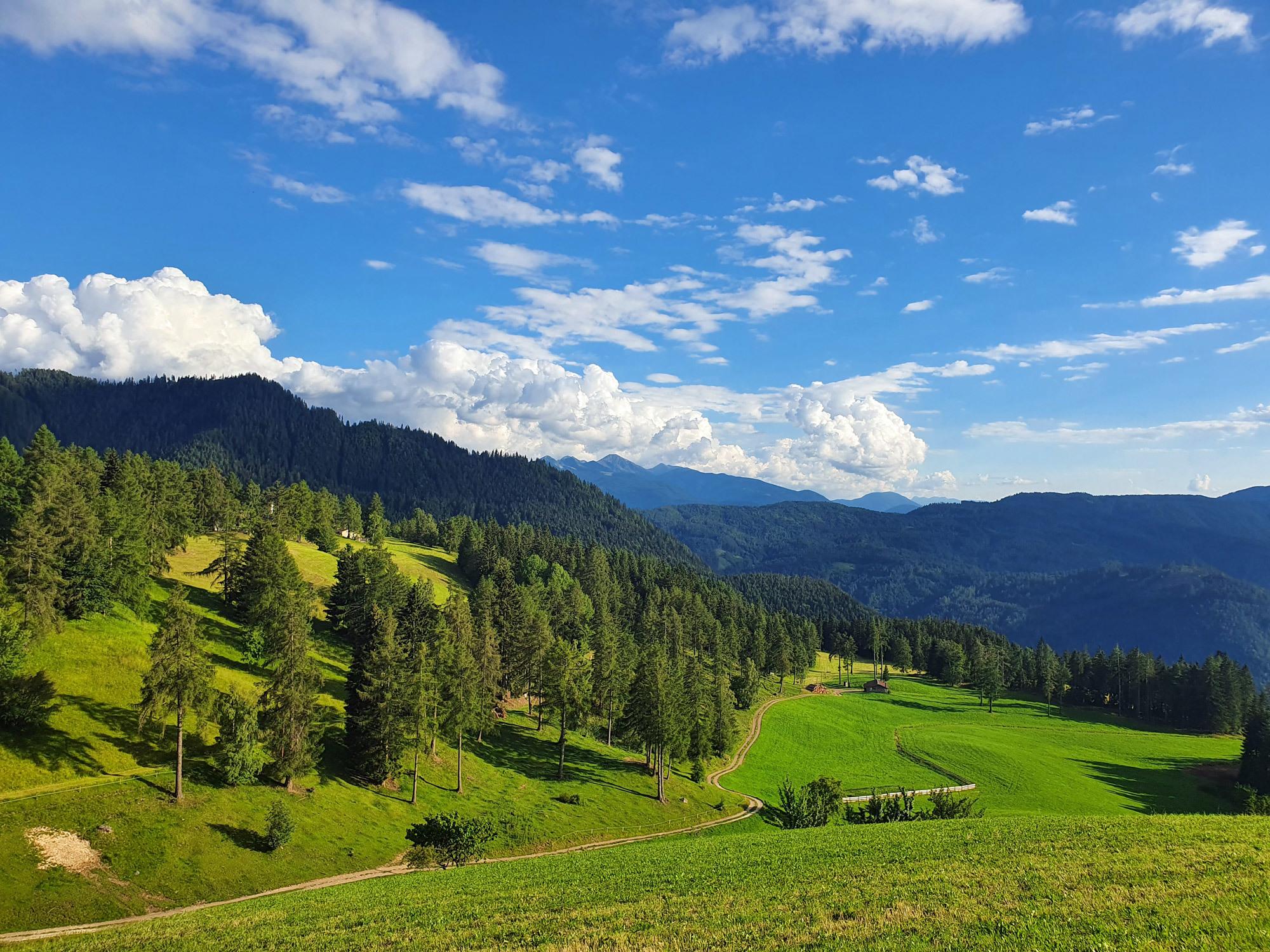 Saftige grüne Wiesen und blauer Himmel machen einen perfekten Sommertag. Foto: Claudia Simone Hoff