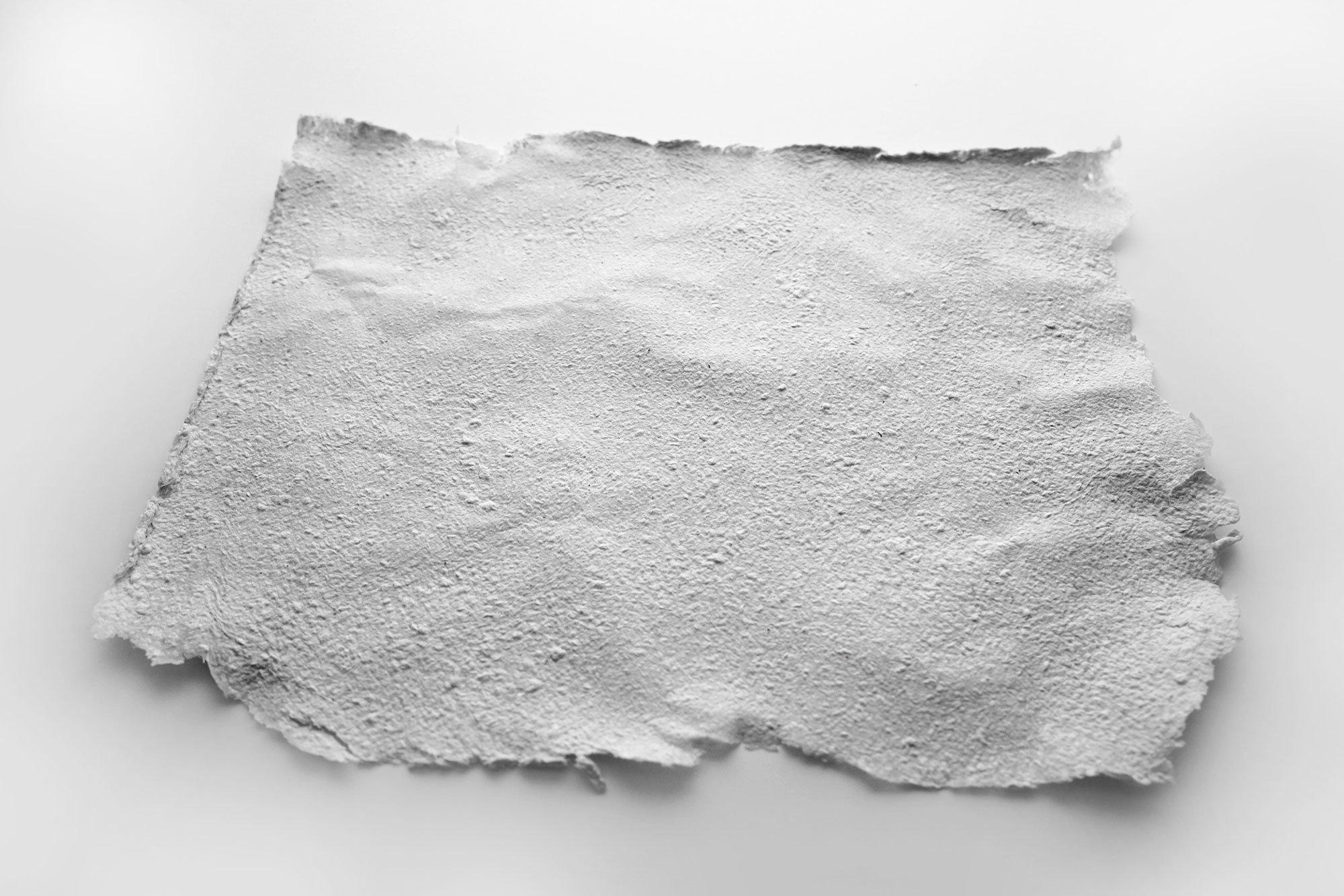 Paper + Bioplastic, Eva Garibaldi