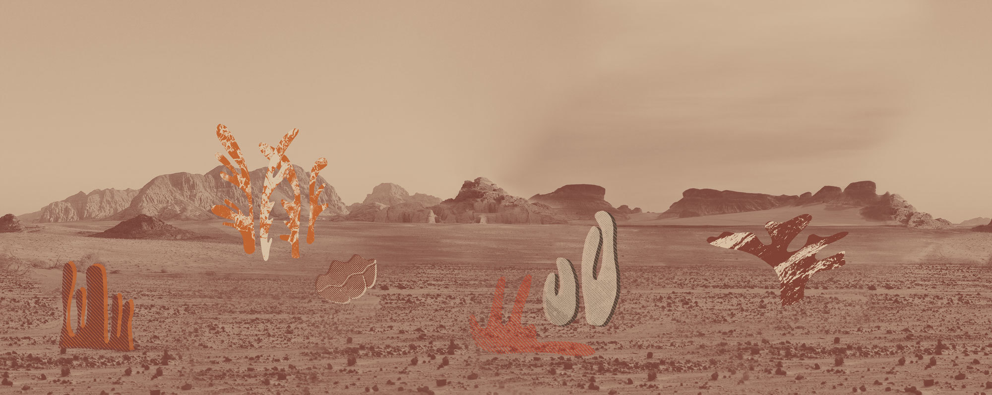Desert Botanica für Wall&decò