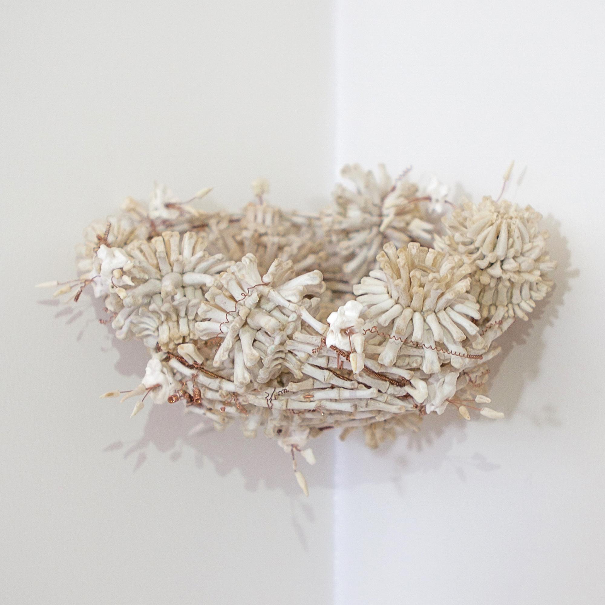 Aus Knochen gebaut: Nestvon Emma Witter, Galerie Fumi. Foto: Galerie Fumi