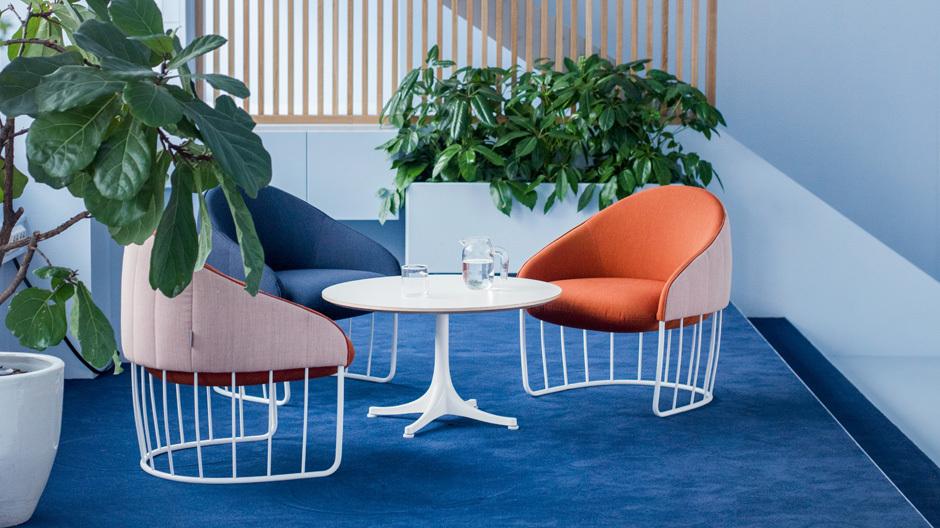 Farbkontraste und viele Pflanzen lockern die Gestaltung des Büros auf.