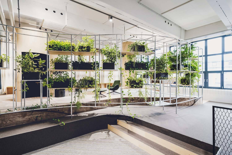 House of Health, AOK, 2019, Innenarchitektur: Blocher Partners, Pflanzen: Beiermeister, Foto: Sarah Weiselowski