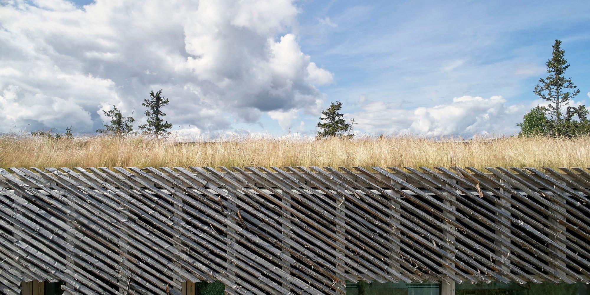 Das Dach ist mit denselben Gräsern bewachsen wie das Grundstück selbst.
