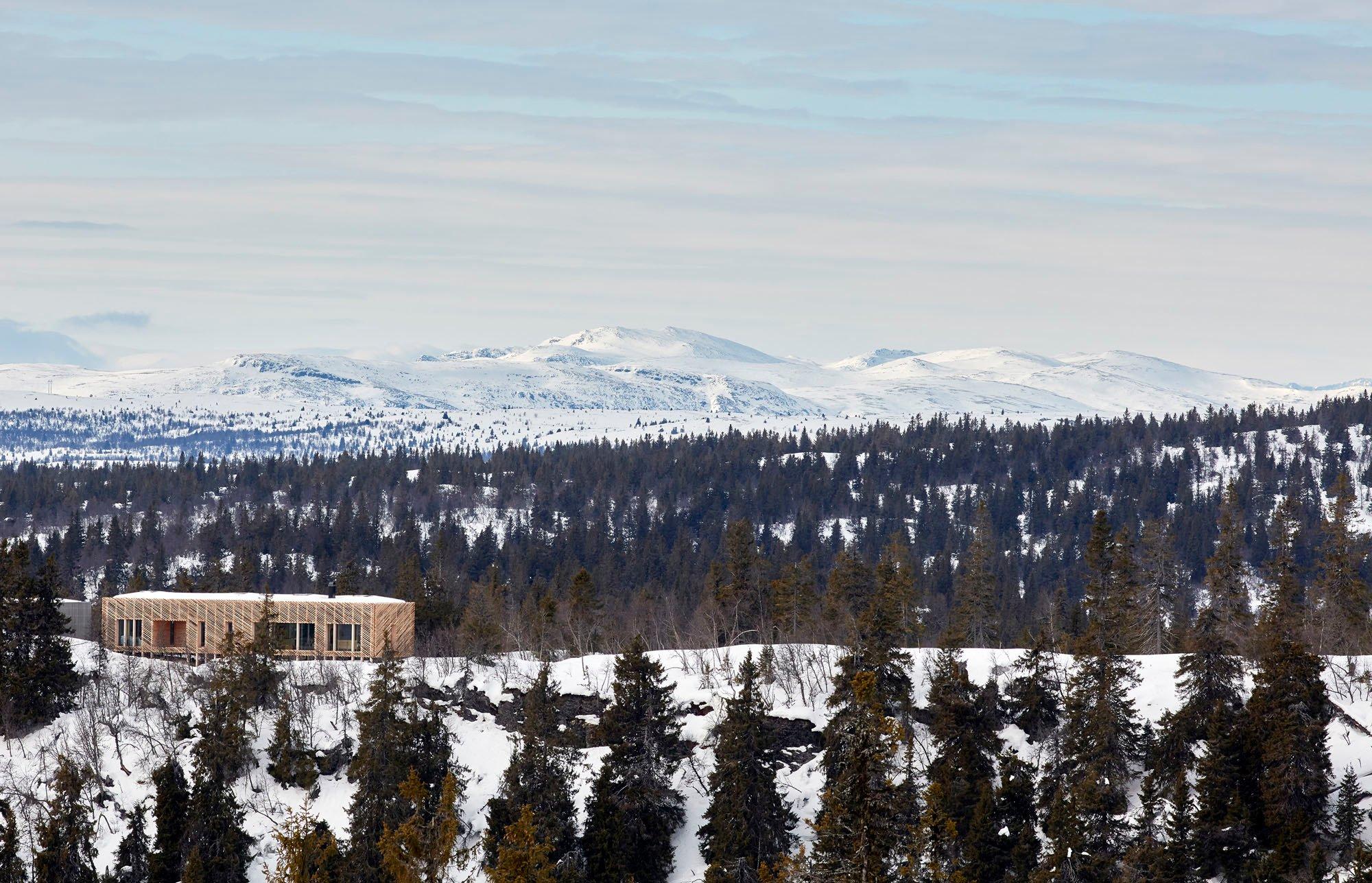 Auf der Spitze eines 1.039 Meter hohen Berges haben Lexie und Casper Mork-Ulnes für sich und ihre beiden Kinder sowie ihren Hund Lupo eine Hütte gebaut.