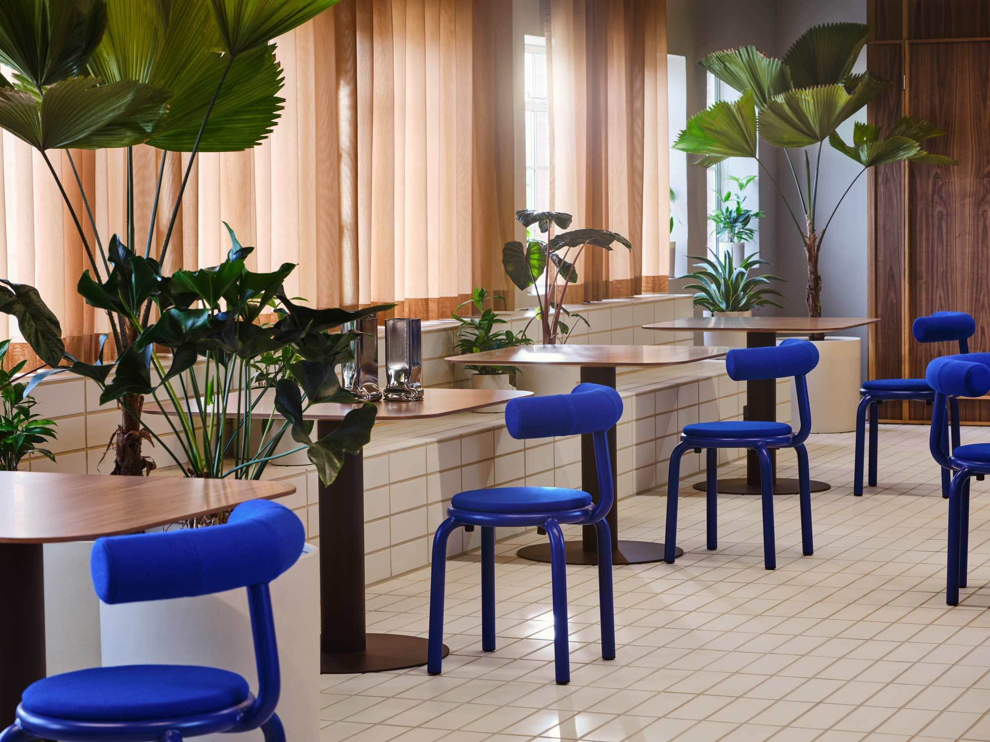 Pflanzen schaffen eine naturnahe Atmosphäre im Douglas House.
