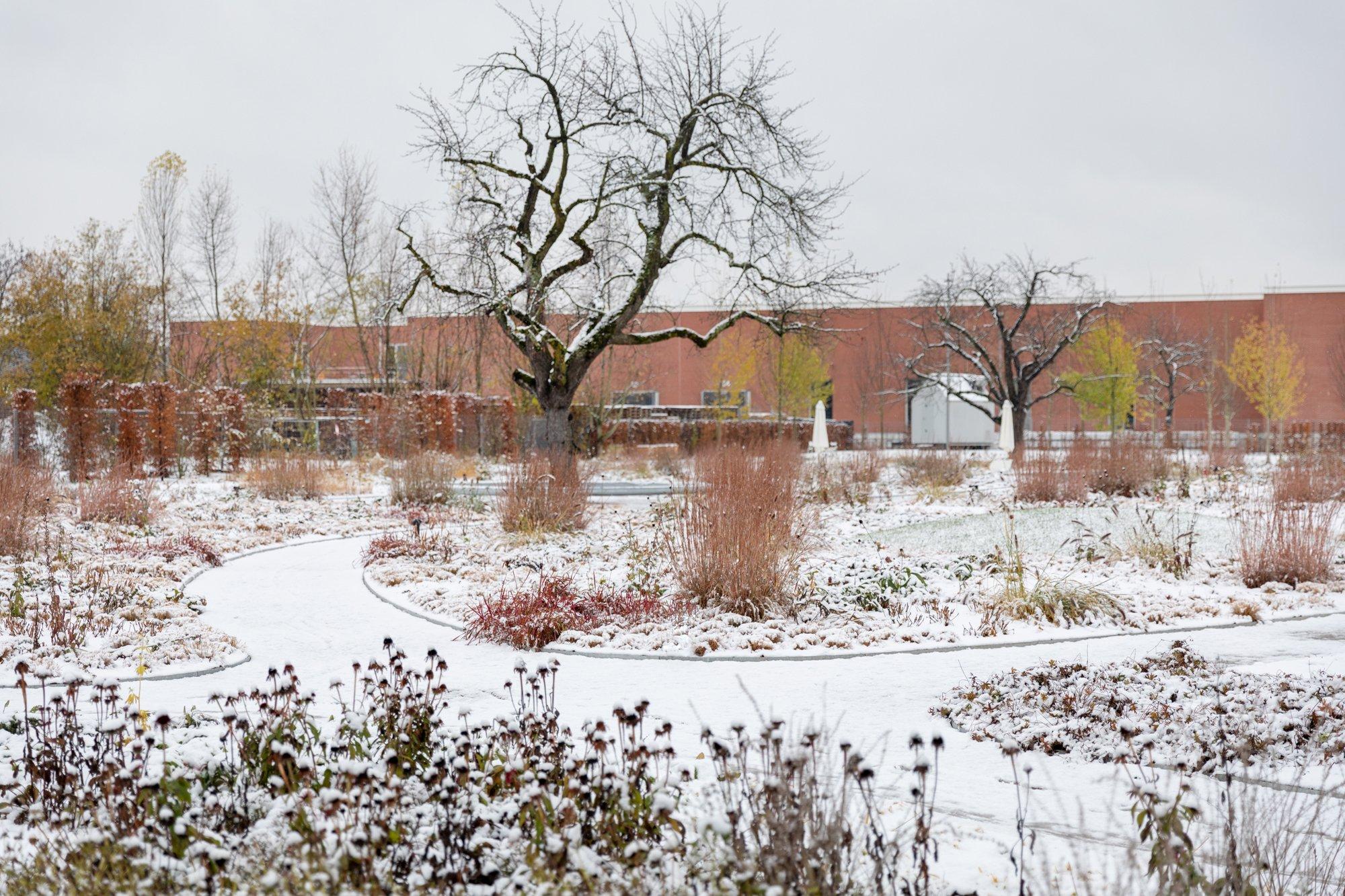 Piet Oudolf Gartenauf demVitra Campusin Weil am Rhein /Dezember 2020 / Foto: @ Vitra