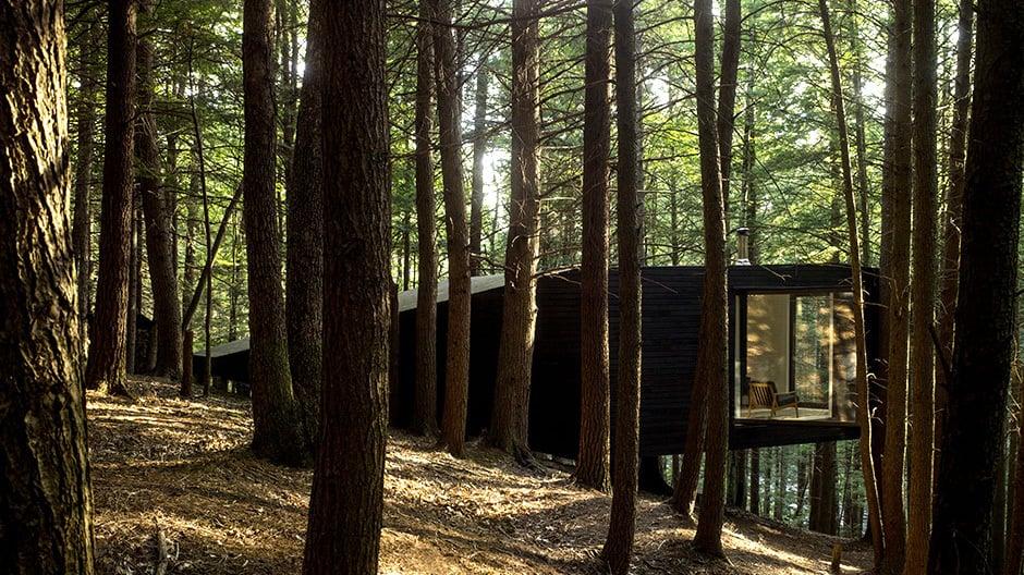 Die schwarze Hütte liegt gut versteckt zwischen den Bäumen und erhebt sich aus dem abfallenden Gelände.