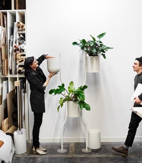Ein Gespräch über die Entstehung der modularen und vertikalen Pflanzwand für Brunner