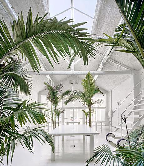Ein Inkubator in Barcelona von Arquitectura-G