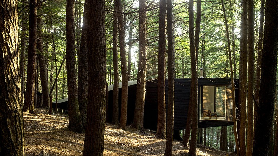 Half-Tree House des New Yorker Architekturbüros Jacobs Chang