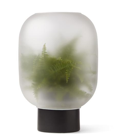 Grünzeug im Nebel von Michael Rem.