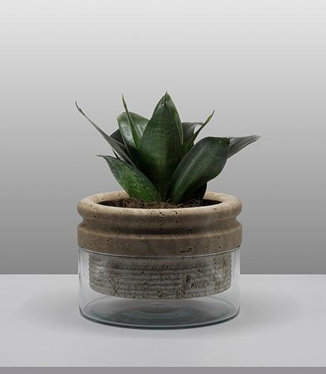 Die Pflanze als Selbstversorger: Übertopf von Moreno Ratti.