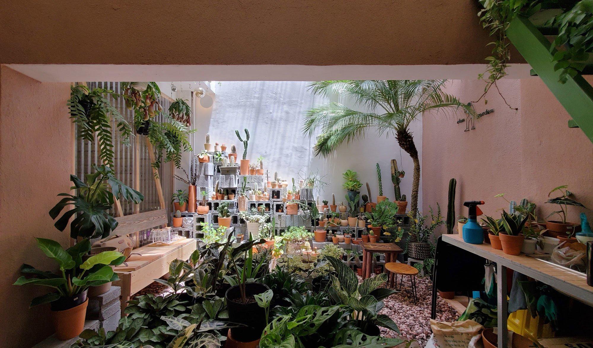 Pflanzenshop von Nhabe Scholae in Vietnam